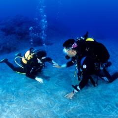 Deep Diver (Profundo)